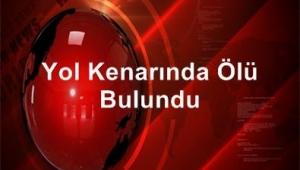 YOL KENARINDA ÖLÜ BULUNDU..