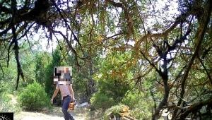 Ormanların gizli gözleri devrede...