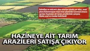 Hazineye ait tarım arazileri satışa sunuluyor..
