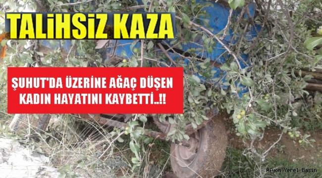 ÜZERİNE AĞAÇ DÜŞEN KADIN HAYATINI KAYBETTİ..!!