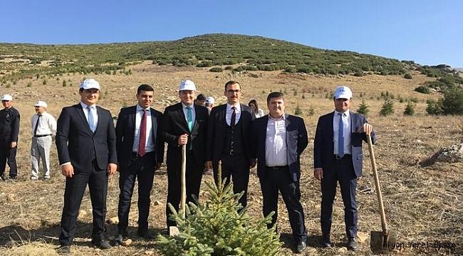 Dinar Adalet Ormanına 500 Karacam Dikildi