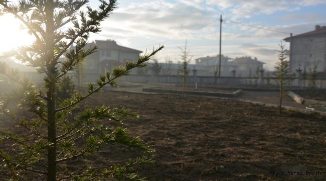 Atatürk Camisinin Bahçe Düzenlenmesi Tamamlandı