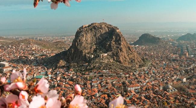 Afyon'da baharın müjdecisi: Badem ağaçları çiçek açtı