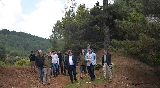Norgas Tabiat Parkında incelemelerde bulunuldu