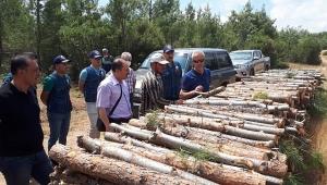 Isparta Orman Bölge Müdürü Dinar Orman İşletmesinde İncelemelerde Bulundu