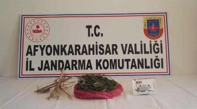 JANDARMA KENEVİR BİTKİSİ EKEN 2 KİŞİYİ GÖZALTINA ALDI..