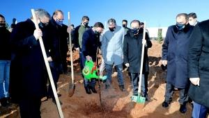 Vali Gökmen Çiçek, AFSÜ Tıbbi ve Aromatik Bitkiler Ar-Ge Ormanı için Fidan Dikti