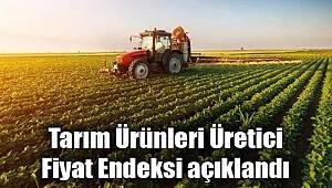 Tarım ürünleri üretici fiyat endeksi (Tarım-ÜFE) yıllık %22,06, aylık %2,52 arttı