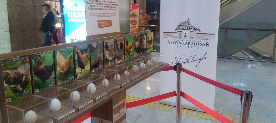 Afyon Yumurta Sektörünün Liderliği Ankara'da Tanıtılıyor.