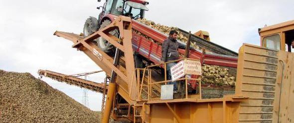 Sandıklılı şeker Pancarı üreticisi Kota Artışı Bekliyor