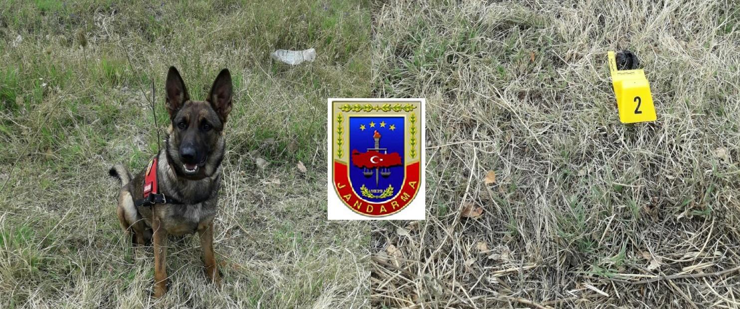 Jandarma Ekipleri Yine İş Başında
